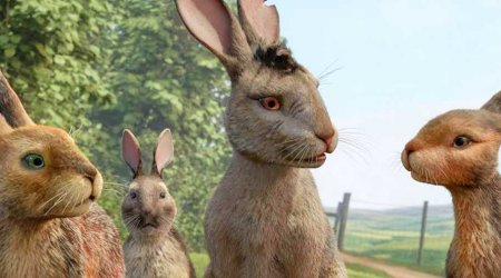 Watership-Down-Trailer-Bbc-Netflix-Animated-Miniseries-450x250.jpg